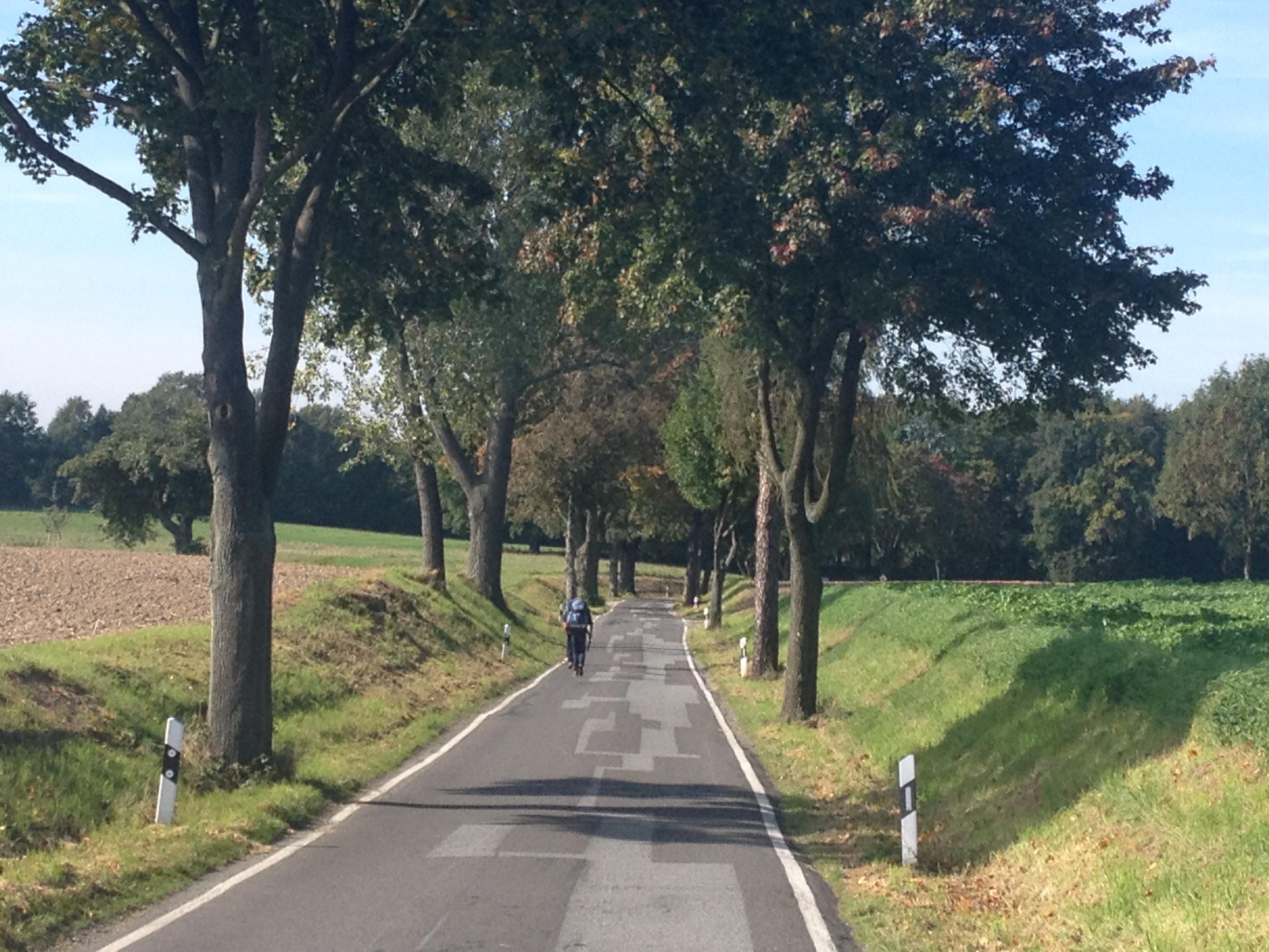 Die Via Regia
