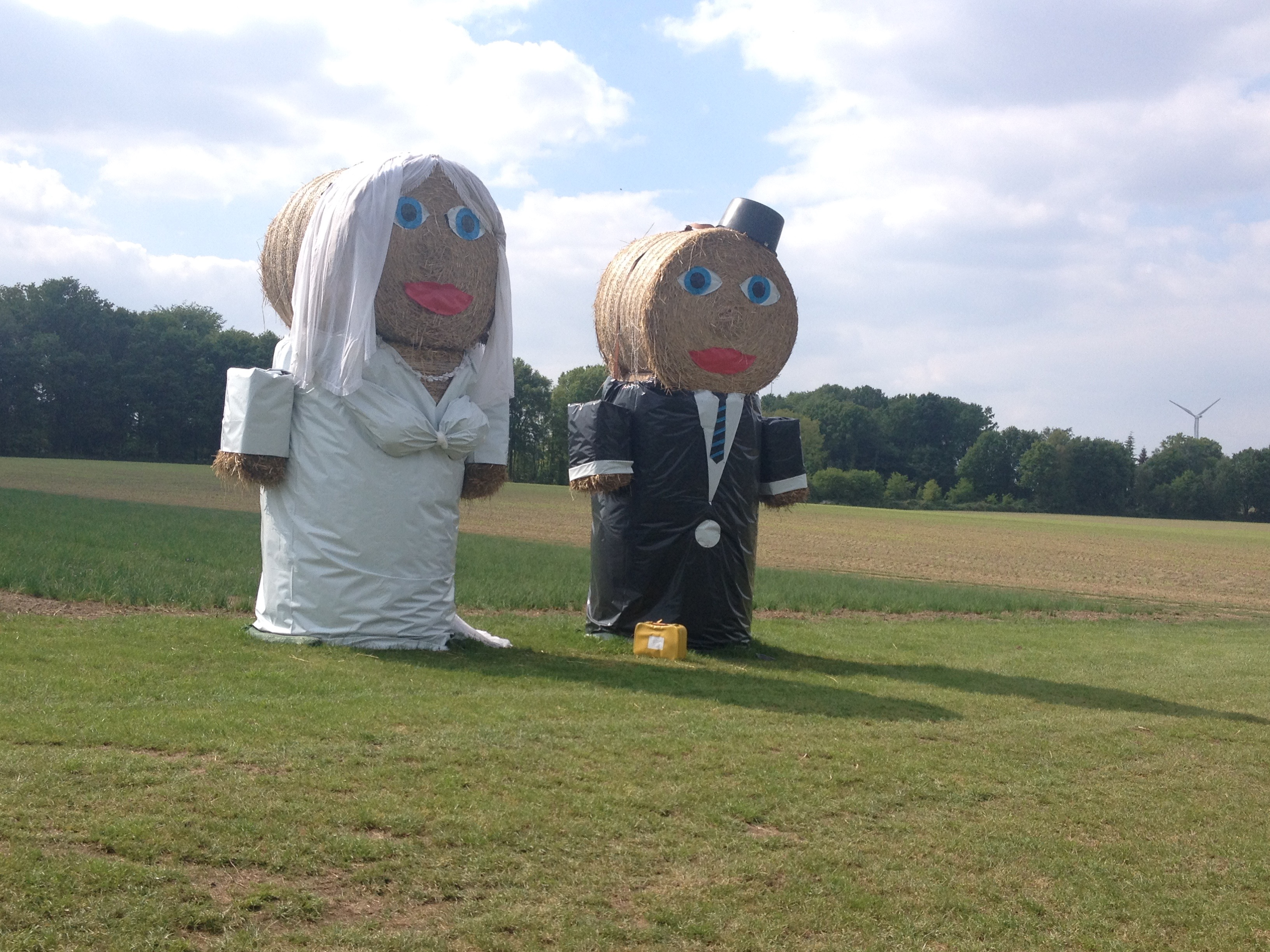 Wohin geht denn die Hochzeitsreise?