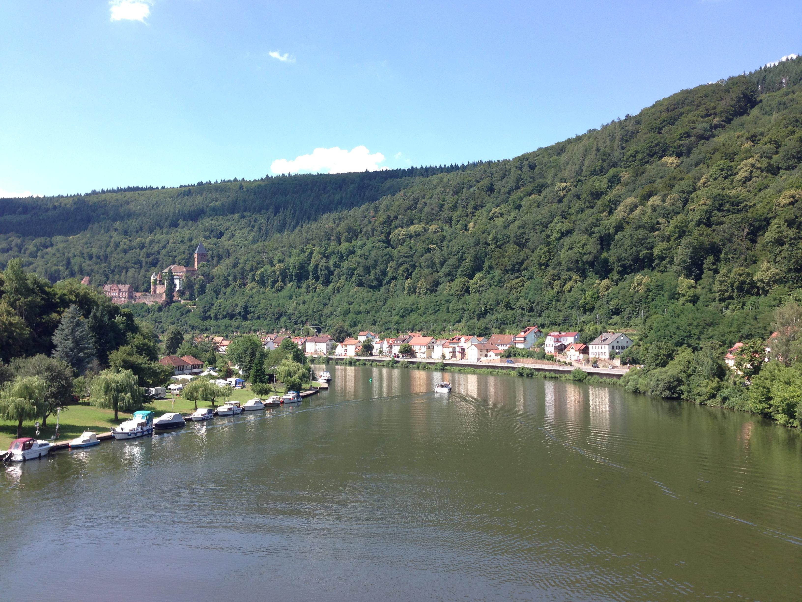 Am Neckar entlang ...