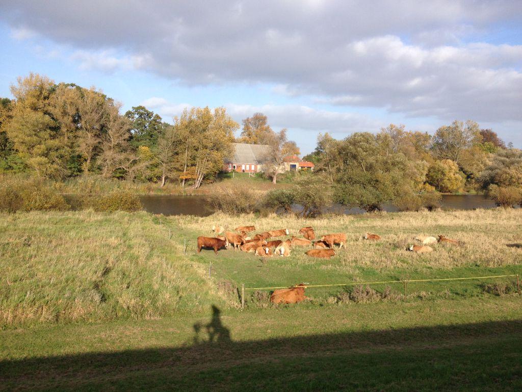 ... Herden und Höfen ...